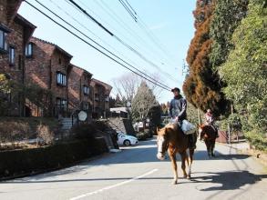 お子さまもご参加OK!乗馬が初めての方でもホーストレッキングを体験していただけます!