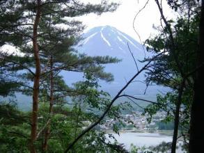 自然は四季折々の表情を見せてくれ、コース途中から富士山を見ることも出来ます。