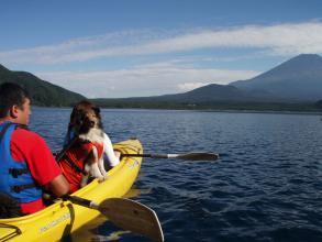 愛犬も同乗可能です。(おとなしい犬に限りますが) 都会を離れて自然を満喫してください。