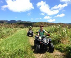 開放的な草原エリアを、爽快に走り抜ける!