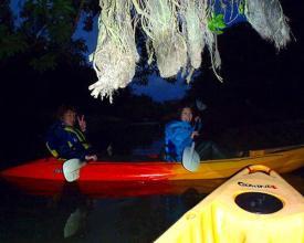 夜の暗闇の中をライトで照らしながら冒険気分でカヤック探検ができる【ナイトツカヤック】