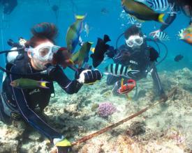 ブセナの海で、体験ダイビングやシュノーケリングを楽しめるのは、『アイランドブリーズ』だけ!!