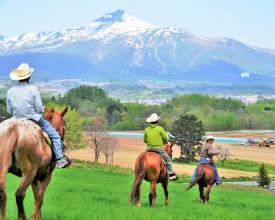 目の前に羊蹄山とニセコ連峰、ニセコの雄大な大地を望みながらのホーストレッキング!